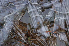 Frozen ground Royalty Free Stock Photography