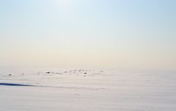 Frozen Gulf of Finland , sunny winter day. Royalty Free Stock Image