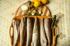 Frozen hake on tray with spices on the kitchen table Stock Photography