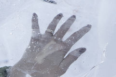 Frozen hand Royalty Free Stock Photo