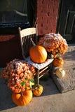Frozen Harvest Royalty Free Stock Photo