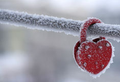 Frozen heart-shaped lock as a symbol Stock Photography