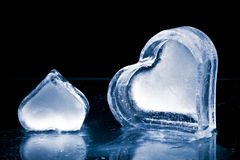 Frozen hearts in ice Royalty Free Stock Image