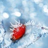 Frozen hip Stock Photo