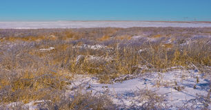 Frozen huge field in the snow Royalty Free Stock Photo