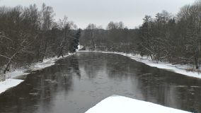 Frozen ice pieces flow with river water between forest trees in winter time stock video footage