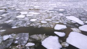 Frozen ice river. Cracked ice floating on the river in spring time. Frozen ice river is melting in spring with ice flakes flowing. Cracked ice floating on the stock footage