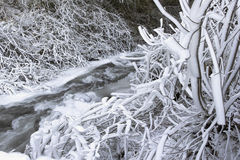 Frozen Ice and Snow Along Flowing Stream Royalty Free Stock Images