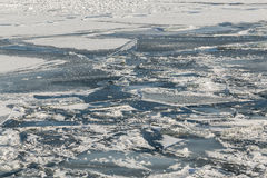 Frozen Ice and Snow on Lake Ontario Royalty Free Stock Image