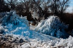 Frozen ice tree in the winter. The parts of the tree are frozen. royalty free stock image