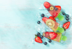 Frozen and iced fuit Royalty Free Stock Photo