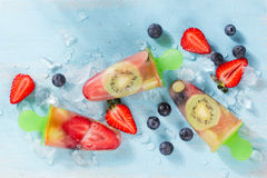 Frozen and iced fuit Stock Image