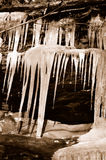 Frozen icicles Stock Images