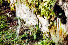 Frozen icicles on mountains Stock Photo