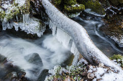 Frozen icicles on water flow Stock Photography