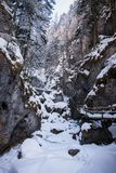 Frozen icy snow covered waterfall in gorge Baerenschuetzklamm in. Frozen icy snow covered waterfall in gorge Baerenschuetzklamm with wodden ladders and bridges Royalty Free Stock Photos