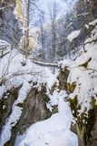 Frozen icy snow covered waterfall in gorge Baerenschuetzklamm in. Frozen icy snow covered waterfall in gorge Baerenschuetzklamm with wodden ladders and bridges Stock Image