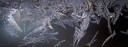 Frozen illuminated Ice Crystals