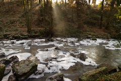 Frozen irish creek. In Clare Glens Royalty Free Stock Image