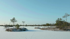 Frozen islands in the winter. Clean and frosty daytime. Smooth dolly shot.  stock video footage