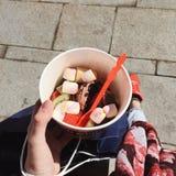 Frozen Jogurt. Germany, Bavaria, Airport Munich royalty free stock image
