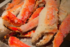 Frozen king crab legs with giant claw and succulent dinner ready. To be broiled, boiled, or grilled royalty free stock photo