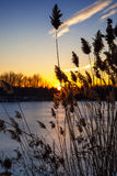Frozen lake. Frozen winter lake at sunset stock image