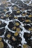 Frozen lake. Background. Royalty Free Stock Image