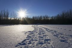 Frozen lake covered in snow and footprints royalty free stock images