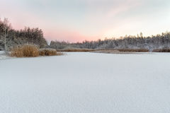 Frozen lake at dawn with fresh fallen snow Stock Images