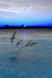 Frozen lake at dusk royalty free stock photo