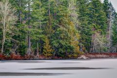 Frozen Lake in the Evergreen Forest Foliage with no snow on trees Stock Photos