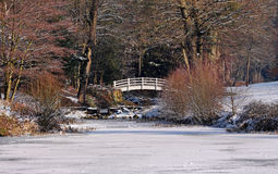 Frozen Lake with footbridge Royalty Free Stock Photo