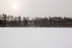Frozen lake and forest Royalty Free Stock Photos
