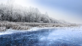 Frozen lake in the forest colored clouds. Royalty Free Stock Photo