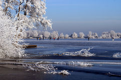 Frozen lake in Holland. A beautiful day in the winter, frozen trees and a frozen lake with people skating Stock Photo