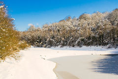 Frozen lake in Legutiano Royalty Free Stock Images