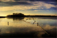 Frozen lake, Leidschendam, Holland Royalty Free Stock Photos