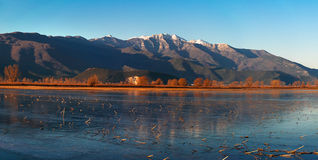 Frozen lake. Low freezing temperatures have freeze the lake Royalty Free Stock Photo