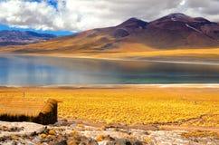 Frozen Lake Miscanti Stock Images