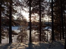 Frozen lake in the morning hours. A frozen lake in the morning in the middle of winter in Dalarna Royalty Free Stock Images
