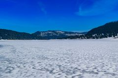 Frozen Lake on a mountain. Surrounded by a forest of pine trees Royalty Free Stock Photos