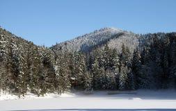 Frozen lake in mountains Royalty Free Stock Photo