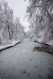 Frozen lake in National Park, Bucharest. Winter time. Royalty Free Stock Photography
