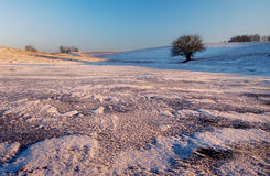 Frozen lake. Near Olsztyn Stock Photography