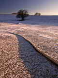 Frozen lake. Near Olsztyn Royalty Free Stock Photography