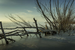 Frozen lake. Near the town of Shumen royalty free stock image