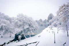 Frozen lake. In park in winter Stock Photo