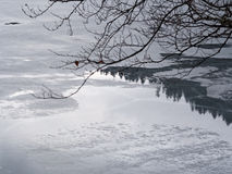 Frozen Lake and Reflections Royalty Free Stock Photo
