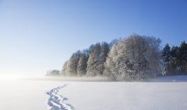 Frozen lake with shoe prints Royalty Free Stock Photo